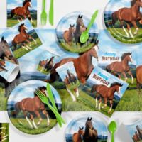 Creative Converting™ Wild Horses 81-Piece Birthday Party Supplies Kit