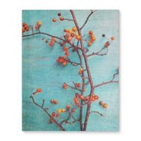 Berry Good 16-Inch x 20-Inch Canvsa Wall Art