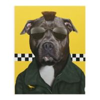 Pets Rock Cabbie Canvas Wall Art
