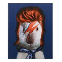 Pets Rock Glam Rock Canvas Wall Art
