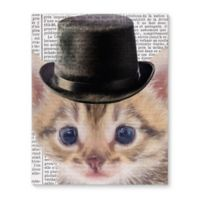 Kavka Designs Cat In Black Hat 8-Inch x 10-Inch Canvas Gallery-Wrapped Wall Art