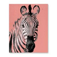 Kavka Designs Zebra Peach 16-Inch x 20-Inch Canvas Wall Art in Pink/Black