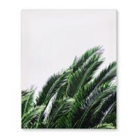 Palm Greens 16-Inch x 20-Inch Canvas Wall Art