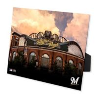MLB Milwaukee Brewers Miller Park PleXart