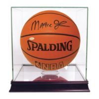 Steiner® Basketball Case