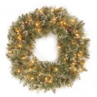 National Tree 24-Inch Glittery Bristle Pine Wreath