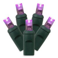 Vickerman 100 LED Light Wide Wire Angle Set in Purple