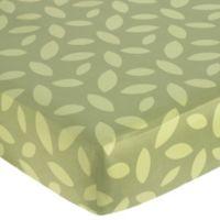 Sweet Jojo Designs Jungle Time Fitted Crib Sheet in Leaf Print