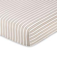 Sweet Jojo Designs Little Lamb Fitted Crib Sheet in Stripe