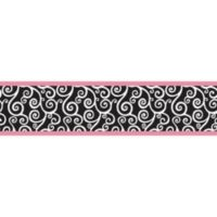 Sweet Jojo Designs Madison Wallpaper Border