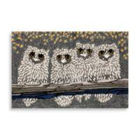 Trans-Ocean 24-Inch x 36-Inch Frontporch Owls Door Mat