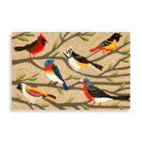 Trans-Ocean 24-Inch x 36-Inch Frontporch Birds Door Mat