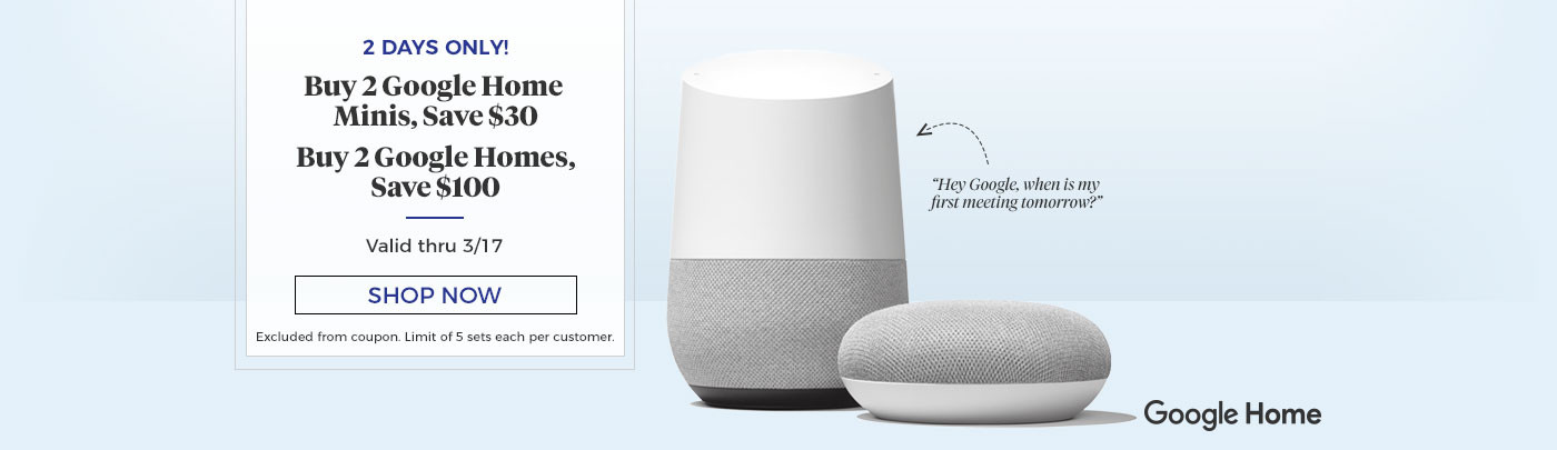 Buy 2 Google Homes or Minis and Save!