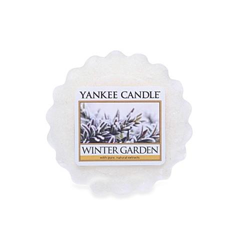 Yankee Candle 174 Winter Garden Tarts 174 Wax Melt Www