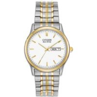 Citizen Mens Eco-Drive Expansion Band Watch