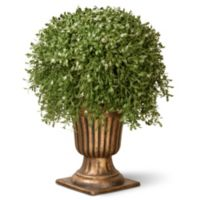 National Tree 26-Inch Argentia Plant with Gold Urn