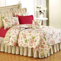 Pink Brianna Standard Pillow Sham