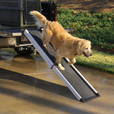 Pet Smart Ramp