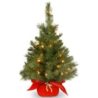 national tree company 2 foot majestic fir pre lit christmas tree with clear lights