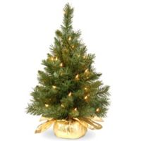 National Tree Company 2-Foot Majestic Fir Pre-Lit Christmas Tree with Clear Lights and Gold Base