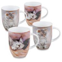 Konitz Kitten Mugs (Set of 4)
