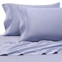 Pure Beech® 100% Modal Sateen Standard Pillowcase Pair in Blue
