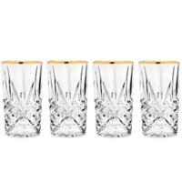 Godinger Gold 10 oz. Highball Glasses (Set of 4)