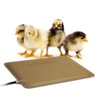 K&H Thermo-Peep™ Heated Pad