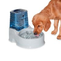 K&H CleanFlow™ Medium Filtered Water Bowl with Reservoir