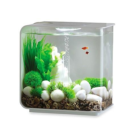 biorb flow 15 liter aquarium in white bed bath beyond. Black Bedroom Furniture Sets. Home Design Ideas