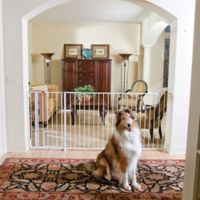 Buy Extra Wide Pet Gate From Bed Bath Amp Beyond