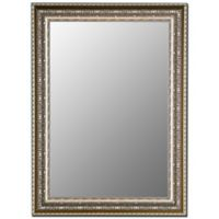 Hitchcock-Butterfield 28-Inch x 38-Inch Decorative Wall Mirror in Venetian Washed Silver
