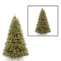National Tree Company 9-Foot Downswept Douglas Fir Pre-Lit Christmas Tree with Dual Color Lights