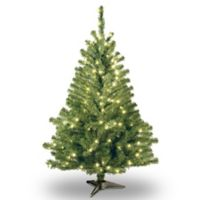 National Tree Company 4-Foot Kincaid Spruce Christmas Tree with Clear Lights