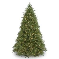 National Tree Company 7-Foot 6-Inch Jersey Fraser Fir Christmas Tree