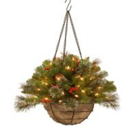 National Tree 20-Inch Crestwood Spruce Hanging Basket