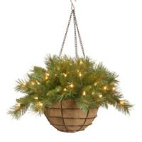 National Tree 20-Inch Tiffany Fir Hanging Basket with Warm White LED Lights