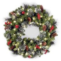 National Tree 24-Inch Crestwood Spruce Pre-Lit Christmas Wreath