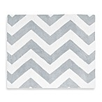 Sweet Jojo Designs Chevron Rug in Grey/White