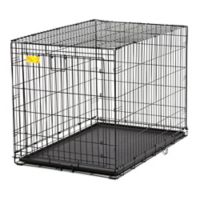 Midwest Life Stages ACE-442DD 2-Door Fold-and-Carry Crate with Divider