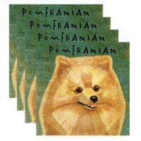 "Thirstystone® ""Pomeranian"" Coasters (Set of 4)"