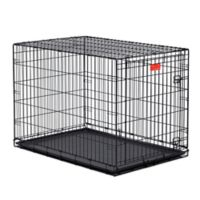 Midwest Life Stages 1642 1-Door Fold-and-Carry Crate with Divider
