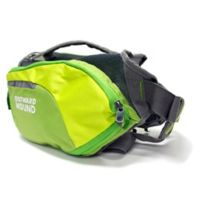 Outward Hound® DayPak™ Small Dog Backpack in Green