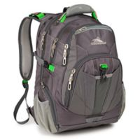High Sierra® Business Laptop Backpack in Charcoal