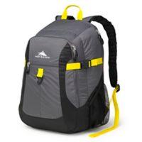 High Sierra® Sportour Computer Backpack in Grey