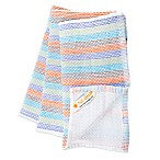 Full Circle Tidy 100% Organic Cotton Multicolored Dish Towels (Set of 3)