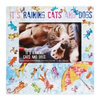 "CR Gibson ""It's Raining Cats and Dogs"" 8-Inch x 8-Inch Pet Frame with Easel Back"