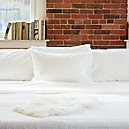 Beantown Bedding Laundry-Free Linens Luxury Disposable Full Sheet Set in White