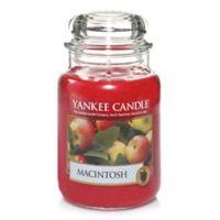 Yankee Candle® Macintosh Large Classic Jar Candle