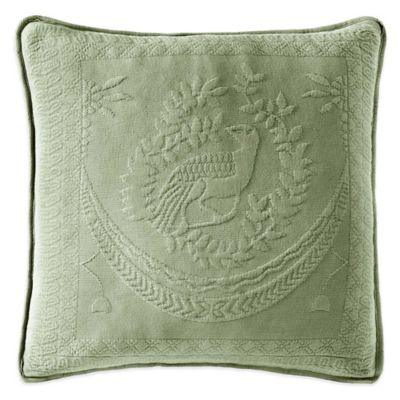 Throw Pillows For Sage Green Couch : Sage Green Sofa Pillows Sofa Ideas
